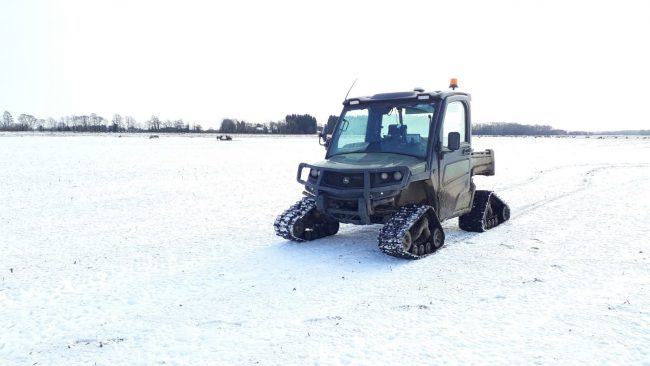 Gator Tracks Snow And Sheep